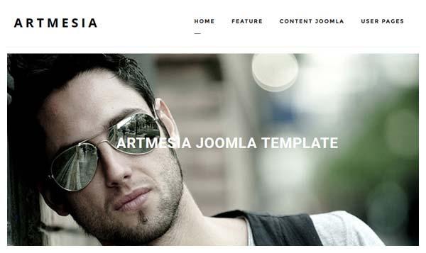 artmesia pro joomla template